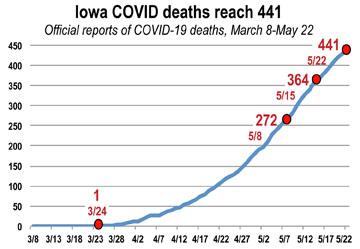 COVID deaths statewide